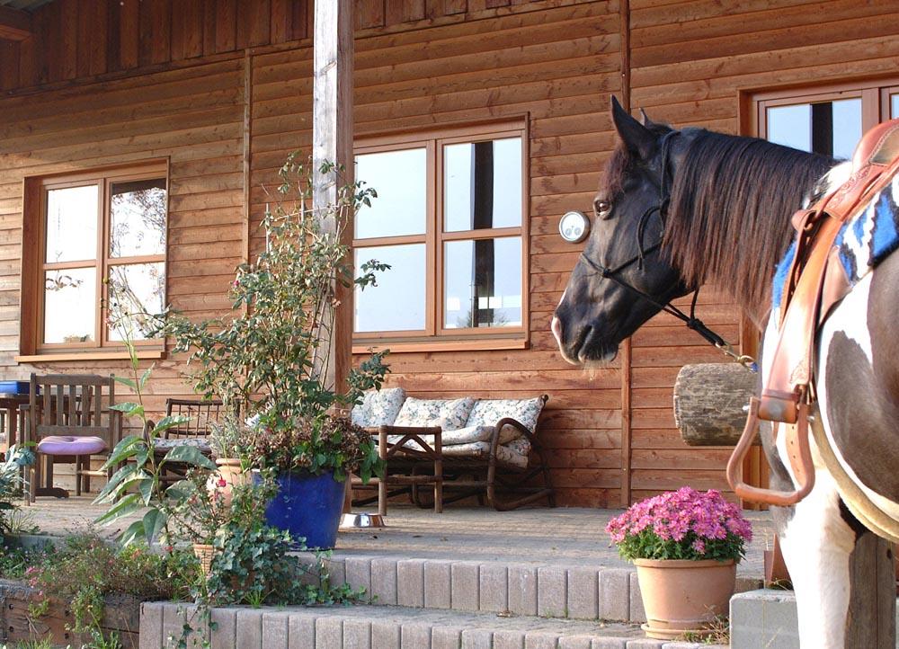 pferdeterasse_1